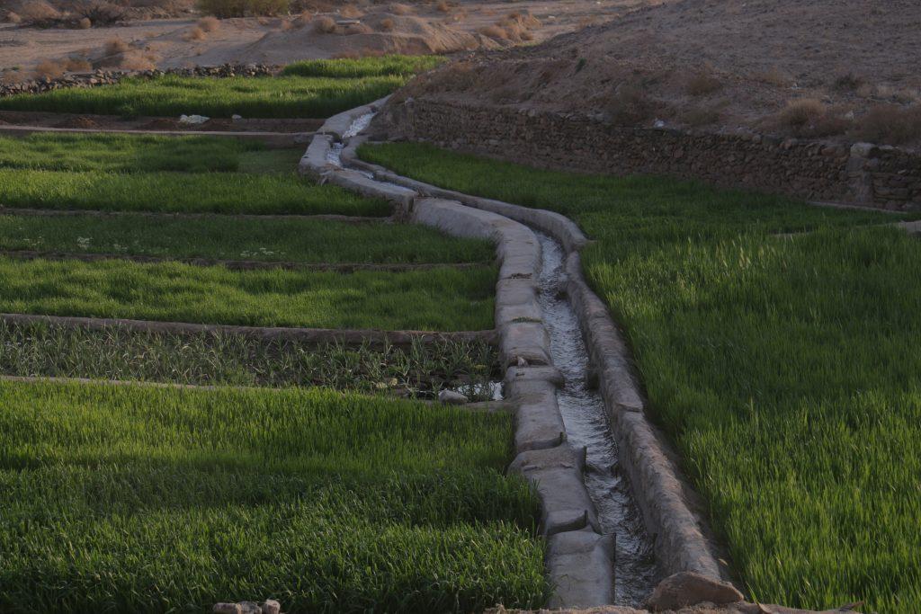 پروژه آب